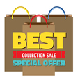 Best Collection Sale vector image