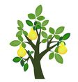 Decorative pear tree vector image