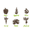 engraved style organic vegetables collection hand vector image