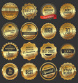 luxury quality golden badge retro collection vector image vector image