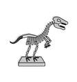 museum dinosaur skeleton icon vector image vector image