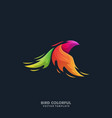 phoenix bird colorful template vector image vector image
