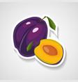 plum sticker cartoon sticker vector image vector image