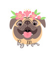 pug mom image of happy mother dog vector image vector image