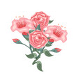 set of beautiful pink roses and tulips vector image vector image
