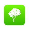 tree icon digital green vector image vector image