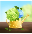 Watering Can With Hydrangea vector image vector image