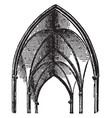 groin side vintage engraving vector image vector image