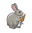 rabbit with carrot sketch vector image
