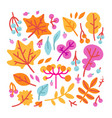 set bright colorful autumn leaves and berries vector image