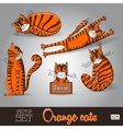 the lovable orange cats set on a vector image vector image
