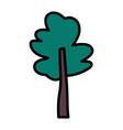 tree botanical nature foliage icon vector image