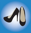 women shoes are black vector image