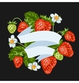 Background with red strawberries of vector image