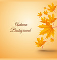 abstract autumn realistic template vector image