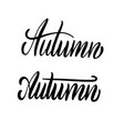 autumn word hand lettering handmade calligraphy vector image