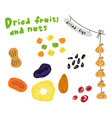 dried fruits and nuts sketch prunes dried vector image vector image