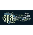Spa word cloud vector image vector image