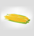 cooked corn boiled corn corn on a white plate vector image vector image