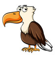 eagle with sad eyes vector image