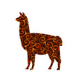 lama mammal color silhouette animal vector image vector image