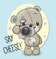 teddy bear with a camera on a cheese background vector image vector image