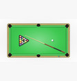 accessories to a game in pool vector image vector image