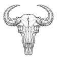 buffalo skull sketch vector image