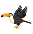 Cute cartoon toucan bird flying vector image