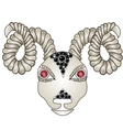 Head of the ram ram head Zodiac signs - Aries vector image vector image