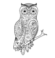 Owl coloring book for adults vector image vector image