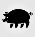 pig icon isolated on white background vector image vector image