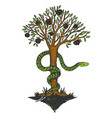 snake and tree of life color sketch engraving vector image vector image