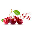 sweet 3d realistic cherry isolated on vector image