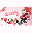 berry mix falling banner vector image
