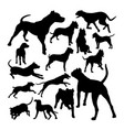 dogo argentino dog animal silhouettes vector image vector image
