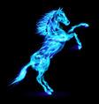 Fair Horse on hind legs 02 vector image vector image