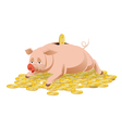 piggy bank and gold coins vector image vector image
