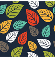 seamless pattern with leafautumn leaf background vector image vector image