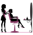 Beauty salon vector image vector image