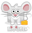 cute cartoon square grey mouse and cheese vector image vector image