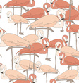 cute seamless pattern with pink flamingos cartoon vector image