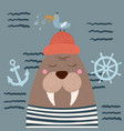 cute walrus characters gull on the cloud vector image vector image