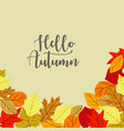 flat design autumn leaves background vector image