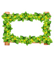 Frame design with leaves and flower vector image vector image