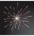 Green and blue coloured firework isolated on vector image