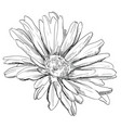 hand drawing flower 3 vector image vector image
