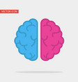 left and right human creative brain flat vector image