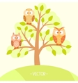 owls in a tree vector image vector image