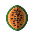 papaya healthy food shadow vector image